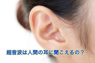 ハクビシン撃退の超音波は人間の耳には聞こえる?周波数などについて