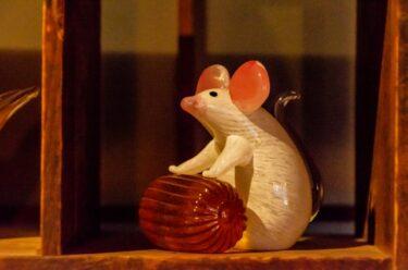 プラスチックや袋に穴!?ネズミがかじるものや対策を紹介